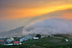 The Wave  (Vincent_Ting) Tags: sunset sky clouds taiwan  formosa  jiayi   seaofclouds alisan    teafield
