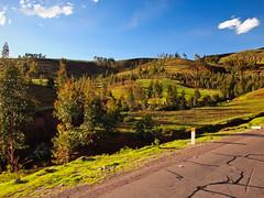 Valle Sagrado (italo&ana) Tags: peru cuzco cusco perú vallesagrado