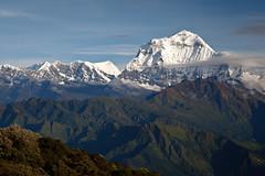Dhaulagiri (8167m), view from Poon Hill (Michał Olszewski) Tags: nepal clouds asia land himalayas acap gandaki punhill kaski annapurnaconservationarea dhaulagirirange dhaulagiri8167m annapurnaconservationareaproject dhaulagirihimal poonhill3210m