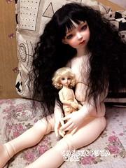 Meat sisters (cassiopeia_wen) Tags: dahlia doll dolls yo bjd 16 bb dollfie volks lorina dollmore yosd 80cm lusion 26mmeye 1415inchwig morelusion