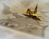 Peace Crane - Metaphor Week