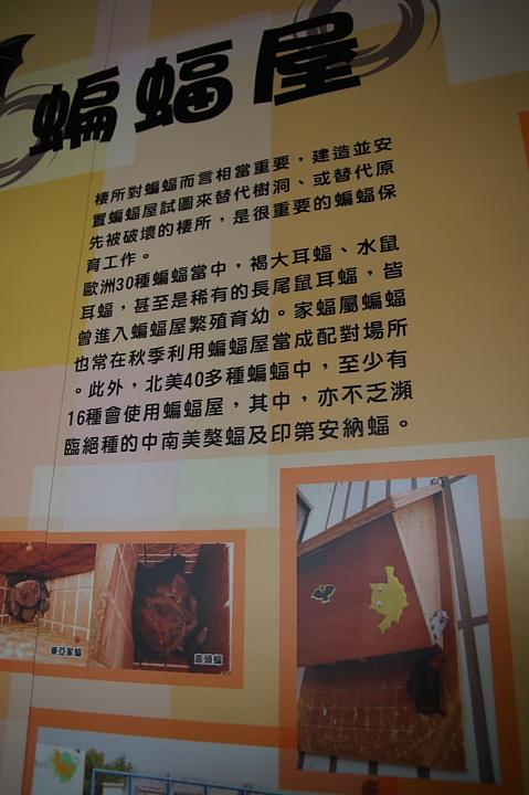 雲林水林黃金蝙蝠生態館(誠正國小)0009