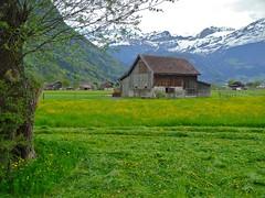 Lucerne (Nouhailler) Tags: switzerland suisse lucerne