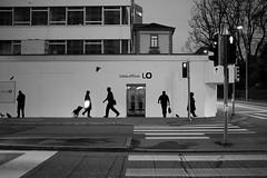 LO in ZH/CH (Toni_V) Tags: street city bw monochrome schweiz switzerland blackwhite suisse zurich silhouettes rangefinder zürich 2012 ubs toniv 35lux messsucher 120129 leicam9 sundymorningphototour lightroom341 l1006137