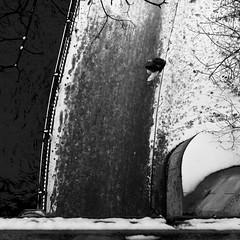 Sunday in the City (harry.f) Tags: life park street city people urban woman dog white playing abstract water horizontal contrast walking children fun exposure fotografie child outdoor tag centre streetphotography himmel pedestrian scene kinder menschen unterwegs hund sw jogging scape tobogganing zentrum kontrast bume mlleimer schlitten gehen wnter gassi spas stadtleben tobo berqueren spazierengehen schwarzundweiss harryf mnche imfreien gassigehen strasenfotografie stasenschild lebeninderstadt stdtischestrase hinterherlaufen 28on35