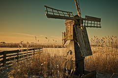 Warm Winter Light (AllardSchager.com) Tags: auto wood winter sunlight snow holland netherlands dutch car vintage fence landscape outdoors nikon frost day sneeuw scarecrow nederland freezing retro textures f16 february dyke dijk cinematic eclectic hout bold weiland 2012 wieken warmlight noordholland hek zonlicht babyitscoldoutside graft toning noordeinde vorst schermer northholland filmisch derijp molentje grootschermer meadowmill nikcolorefexpro d700 nikond700 vergeeld nikkor2470mmf28 nikonfx weidemolen allardone allard1 wuivendriet duohardstrak vriezend fullframepower allardschagercom