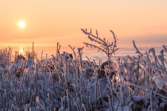 Gooimeer met -18 (KennethVerburg.nl) Tags: winter lake snow ice netherlands dutch sunrise landscape meer sneeuw nederland flevoland 2012 landschap almere gooimeer ijs zonsopkomst