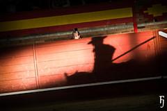 Detalles (FJimenez92) Tags: toros bullfight leandro valdemorillo morenitodearanda ivanvicente