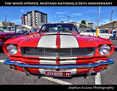 The White Stripes (Stephen Kinna Photography) Tags: street old original red white building heritage classic cars car club pier photo nikon university waterfront muscle anniversary stripes performance engine australia melbourne victoria pony chrome national american permit shelby restored 1960s grille mustang 50th 50 nationals hdr highdynamicrange musclecar mustangs 1964 geelong 289 deakin nikond600 photoengine oloneo stephenkinna stephenkinnaphotography 20905h