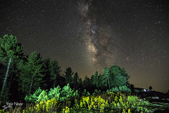 Milkyway at Paye Meadows (Max Loxton) Tags: pakistan kaghanvalley payemeadows yasirnisar pakistaniphotographer milkyway nightscapes nightphotography pentaxk3 pentax1224f4 yasirnisarphotography maxloxton maxloxtonfilms