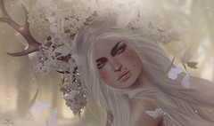 ScreamingViolet~The cute fawn and the white butterflies (Skip Staheli (Clientlist closed)) Tags: portrait avatar sl digitalpainting fawn fantasy secondlife dreamy virtualworld skipstaheli screamingviolet
