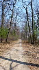 Le Sentier De La Plage Nudiste D'Okapulco. 2016-05-12 12:58.59 (Sandbanks Pro) Tags: park gay holiday canada man tree male nature naked nude nationalpark quebec nu trail homosexual paysage arbre parc sentier vacance oka homme gai touristique vgtation nakedman naturiste nudisme parcnationaldoka homosexuel parcnational nudis nudiste