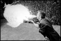 Spitfire- (fotojob) Tags: spur fotojob