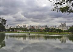 SAO PAULO, BRAZIL - Ibirapuera park/ -,  -   (Miami Love 1) Tags: park parque brazil latinamerica southamerica brasil saopaulo latinoamerica brazilian ibirapuera brasileiro sudamericano sudamerica latinamerican brasileno latinoamericano southamerican