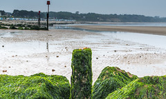 She sells (nicklucas2) Tags: sea seascape beach rock seaside pebble seashell groyne