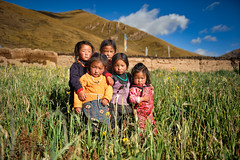The mini-gang (nico3d) Tags: tibet amdo tibetan kham tibetanplateau
