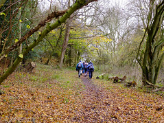 DSCF0152.jpg (Rod Grable) Tags: uk walking landscape countryside preston hertfordshire hitchin ramblers herts charlton x100 englend greatoffley nhrg