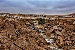 Desert after rain (TARIQ-M) Tags: longexposure sky cloud tree texture water car rain landscape sand waves desert dunes landcruiser riyadh saudiarabia hdr    vxr          canonef70200mmf4lusm                canoneos5dmarkiifullfram