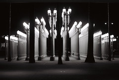 city of streetlights (Xiangk) Tags: bw white black art film america 35mm la los unitedstates angeles lacma