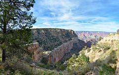 Grand Canyon (scuba_dooba) Tags: arizona usa america river us colorado united grand canyon fisheye states 180 105mm defished ongtupqa