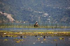 Guatemala - Lago de Atitlán (Galeon Fotografia) Tags: lake lago see meer guatemala panajachel sjø sjö lagodeatitlán lawa озеро laku гватемала γουατεμάλα galeonfotografía