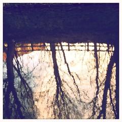 Canal (simonthomsonphotography) Tags: trees huddersfield huddersfieldnarrowcanal hipstamatic