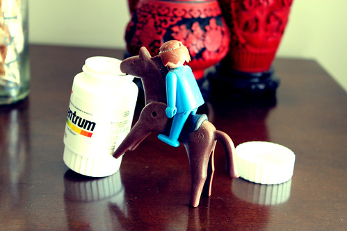 horse centrum playmobil vitamin
