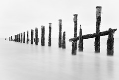 Minimalist Groynes (Father Pie) Tags: mono blackwhite groynes spurn
