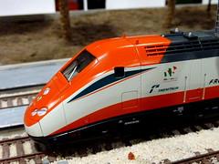 Il plastico modulare - 4 (Salvo Genovese) Tags: auto tram memo da plastico della palazzo navi cultura messina afs treni antonello 2011 modulare fremo