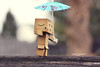 And then it was time for the big show! (aebphoto) Tags: christmas cute umbrella canon focus dof bokeh tightrope merrychristmas christmasday tightropewalker danbo canon50mm niftyfifty danboard rebelxsi odc2 rebel450d revoltechdanbo ourdailychallenge2 december252011 andtheitwas theamazingdanbini