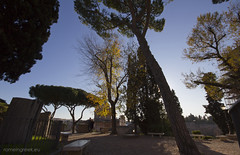 """Campidoglio, giardino • <a style=""""font-size:0.8em;"""" href=""""http://www.flickr.com/photos/89679026@N00/6576156477/"""" target=""""_blank"""">View on Flickr</a>"""