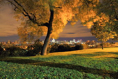 My Tree At The Park (pmarella) Tags: park city nyc longexposure trees sky urban usa color nature skyline night clouds landscape lights newjersey jerseycity solitude cityscape shadows nj whatever viewlarge pmarella lamplight tranquil donttrythisathome hudsoncounty sigma1020mm whileyouweresleeping amomentintime dancinginthedark anotherdayinparadise throughmyglasseye riverviewpkproductions wanderingatnight myeyeshaveseenthis eos7d