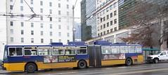 Broken Breda Blocking Buses (zargoman) Tags: seattle travel bus electric trolley transportation transit breda articulated rebuilt kingcountymetro dualmode trackless adpb350 kiepeelektrik tunnelbus