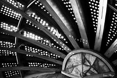 Textura de Bellas Artes_2 (Iván Plaza) Tags: city travel urban blackandwhite architecture mexico arquitectura mx