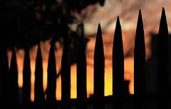 Spiked Sky (Wilamoyo) Tags: york england sky sun black color colour up silhouette metal sunrise fence close bokeh rail railing shape pointed macrospike