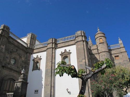 Catedral parte trasera
