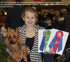 2011 AKC National Eukanuba Best Bred By Australian Terrier and 1st Award of Excellence!