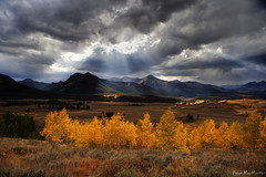 Lances of light pierce the ashen sky above (Dylan MacMaster) Tags: autumn yellow clouds idaho aspen godrays sawtoothmountains highway75 neargalenasummit