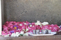 floral offerings (this is emily) Tags: srilanka anuradapura