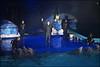Dolfinarium & Frans Bauer _ 62 (@2008) Tags: people holland netherlands zoo dolphin dolfinarium harderwijk dolfijn fransbauer a900 zeiss135mmf18 sal135f18z sal135f18za