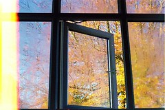 damp (j e s s i c a b e t h) Tags: autumn film home window bedroom condensation manual 2011