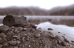 Parangana Mist (Bentau) Tags: mist lake mountains water log rocks anchient tasmaniaaustralia tokina1116mmf28 lakeparangana