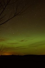 22-1-12 (Copperhobnob) Tags: sky stars aberdeenshire aurora orion plough northernlights auroraborealis copperbeech