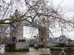 Hiding (Gemini~Girl) Tags: bridge blue trees england london tower water lumix grey panasonic dmczs8