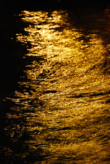 Venice - Liquid Gold on the Grand Canal