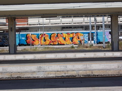 Immagine 239 (en-ri) Tags: car train writing graffiti pisa whole writer dowta
