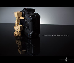 Danbo Doesn't Get It - Week 5 of 52 *Explore* (Will (Certified Ninja)) Tags: ex dc f14 setup 30mm danbo canon580exii 7dsigma canon430exii hsmcanon cactusv4canon 50dcanonsigmastrobiststrobist