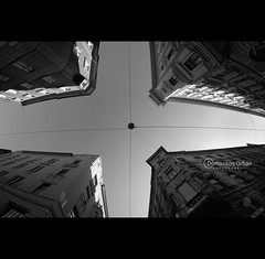 tulipn (ODPictures Art Studio LTD - Hungary) Tags: street city sky white fish black building eye lamp monochrome canon eos europe hungary budapest 8mm ff 2012 f35 vros samyang 60d orbandomonkoshu szinap