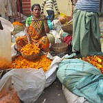 "Weighing Flowers at Howrah Flower Market <a style=""margin-left:10px; font-size:0.8em;"" href=""http://www.flickr.com/photos/14315427@N00/6829236287/"" target=""_blank"">@flickr</a>"