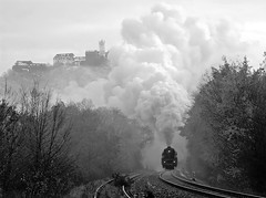 03 1010 (maurizio messa) Tags: railroad morning bw germany thringen blackwhite railway trains bn steam bahn morgen bianconero mau germania mattino ferrovia treni dampf plandampf vapore 031010 br03 nikond40x werrabahn teamlorie